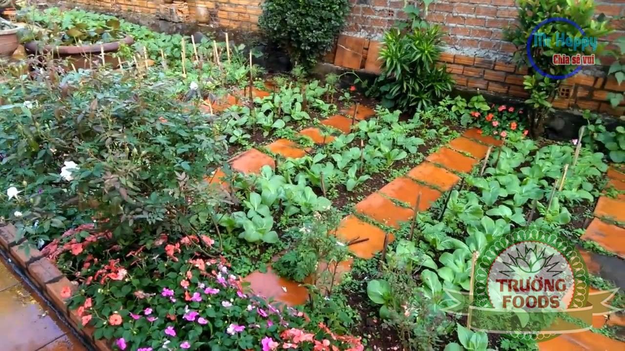 khu vườn nhỏ
