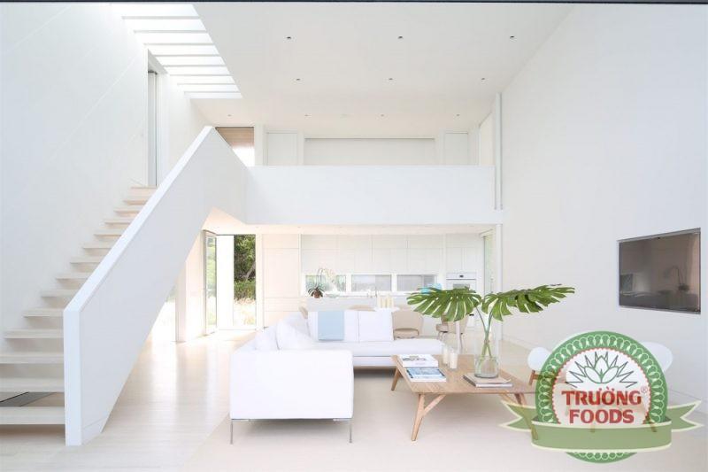 nhà màu trắng sẽ làm mát cho ngôi nhà hơn vào mùa hè