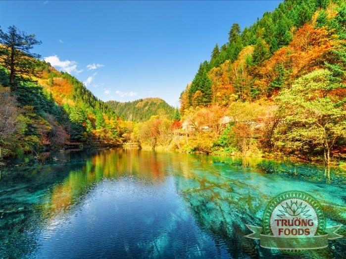 Chiêm ngưỡng mùa thu tuyệt đẹp trên khắp thế giới