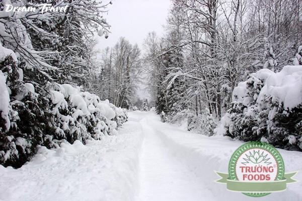 9 bệnh thường gặp vào mùa đông và những lời khuyên bổ ích